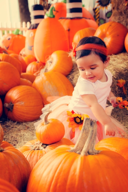 Pumpkin Patch - 2014